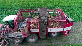 Suikerbieten rooien 2018 / Sugar Beet Harvest / Zuckerrüben roden / Agrifac Hexa / John Deere
