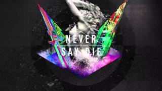 Never Say Die vol. 81 -Mixed by Spag Heddy-