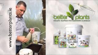 Better Plants - Seaweed Liquid Fertiliser