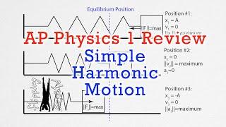 AP Physics 1: Simple Harmonic Motion Review