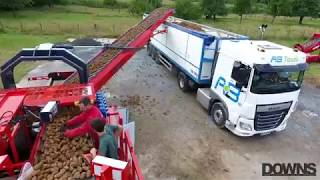 Potato Field loader - Clean loader DOWNS