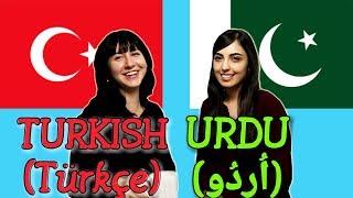 Similarities Between Turkish and Urdu