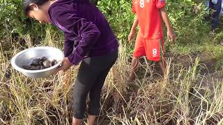 Amazing Beautiful girl fishing -  Little Girls Catch & Cook Snails - Village Foods Factory