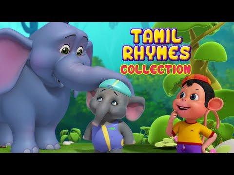 சின்ன யானை and more Animal Rhymes | Tamil Rhymes for Children | Infobells