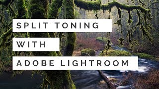 Editing in Lightroom - Split Toning with Intent