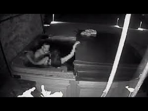 Hot tub sex trespassers caught on Kelowna security camera