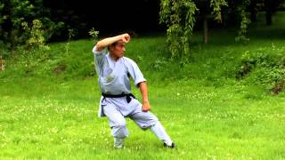 Shaolin Monk Showing Kung Fu Form in the Green Meadow - Zenitude Experience