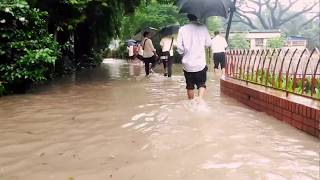 A rainy day in NDC,Dhaka|26 July 2017| Brishty chuye|Tahsan