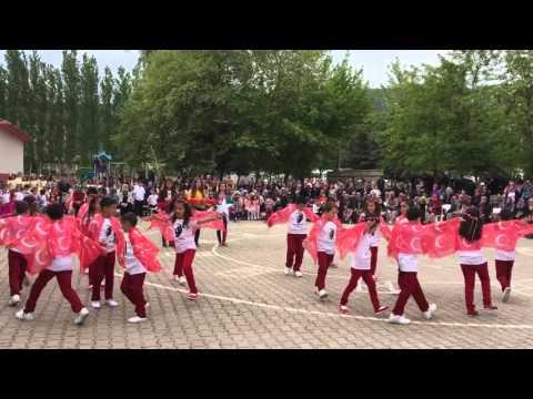 23 Nisan 2016 Bayrak Gösterisi Gökçeyazı Ş.R.Ç.İlkokulu Balıkesir