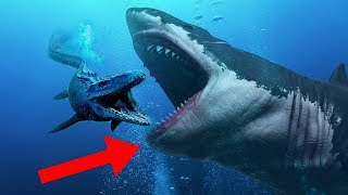CRAZIEST Facts About The MEGALODON Shark!