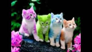 cute wallpapers free download for mobile