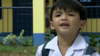 Binoy Henyo: Binoy, ginulat ang mga bubuyog