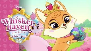 Hearts! Hooves! Eggs!   Whisker Haven Tales with the Palace Pets   Disney Junior