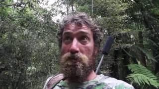 deer stalking in the bush part 1