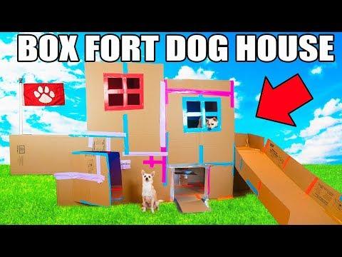 TWO STORY BOX FORT DOG HOUSE 📦🐶 Elevator Slide Tv & More