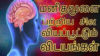 Some unkown facts about Human Brain in Tamil