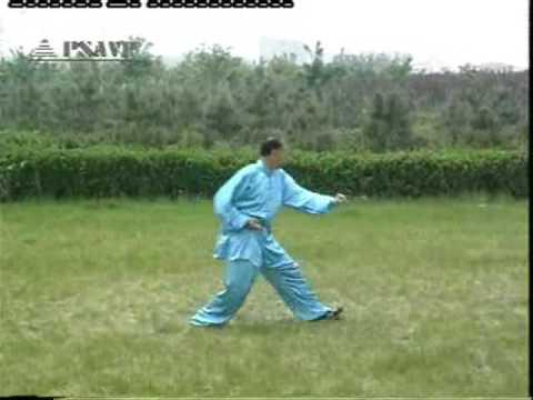 Che Xing Yi 12 Animals