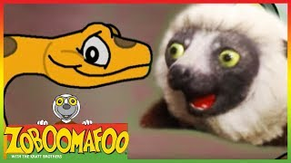 Zoboomafoo 201 - Colourful Snakes (Full Episode)