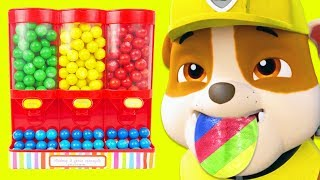 Learn Colors with Paw Patrol Gumballs