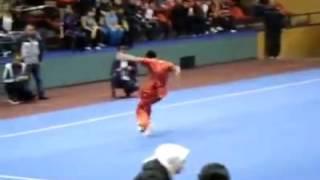'Wushu Taolu' Dancing Fly