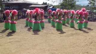 Hawaiian Dance by SCES Star Scout
