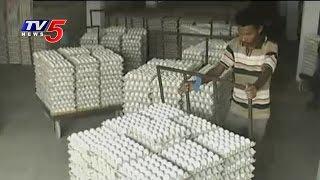 Success Story   Paruchuri Venkata Rao Poultry Farming   Annapurna   Guntur   TV5 News