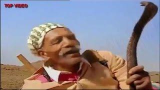 شاهد اخطر صياد الافاعي بالصحراء المغربية  Voir les serpents de chasse les plus dangereuses