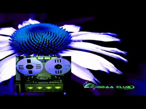 Xxx Mp4 Oromo Music The Best Of Kadir Said Nuti Onneera Walljaalanne Audio Music Only 3gp Sex