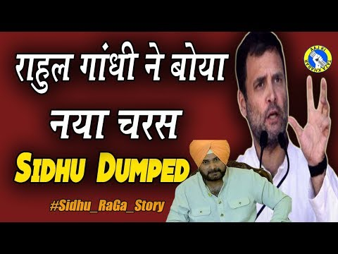 Rahul Gandhi s at his hilarious best shows Sidhu his place AKTK