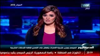 السيسي ووزير خارجية الإمارات يتفقان على التصدي لكافة التدخلات الخارجية