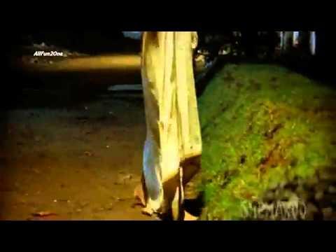 Xxx Mp4 Mallika Sherawat Compilation Of Hot Scene HD Hiss Mp4 3gp Sex