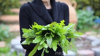 Dandelion Salad Recipe - Heghineh Cooking Show