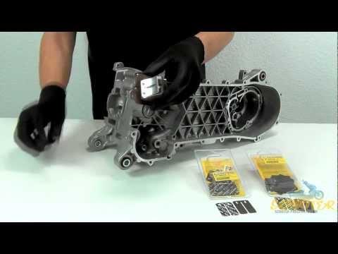 Produktvideo Membranplättchen Malossi carbon karbonit Membranzungen scooter prosports