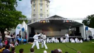 Taekwon-Do Einschrittkampf