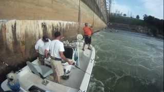 Wilson Dam Striper Fishing on Tennessee River with BigFishHeads