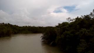 Largest Mangrove forest on Earth - Bangladesh
