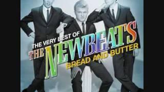 Run Baby Run-The Newbeats-1965