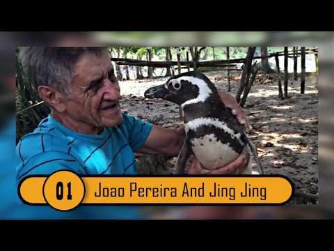 10 Unbelievable Animal People Bonds