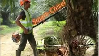 Mesin canggih untuk pemanen kelapa sawit