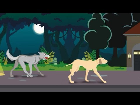 Xxx Mp4 Urdu Cartoon Kahani Azadi Ki Khushi Cartoon Kahani For Kids 3gp Sex