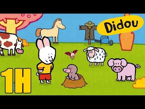 1 heure de Didou dessine moi la campagne Compilation Dessins animés pour les enfants