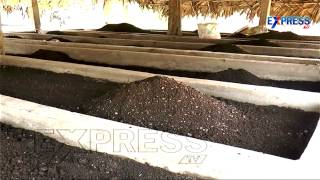 Vermi Compost Prepartion and Government Subsidies : Paadi Pantalu | Express TV