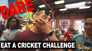 The Eating a Chocolate Cricket Challenge vlog