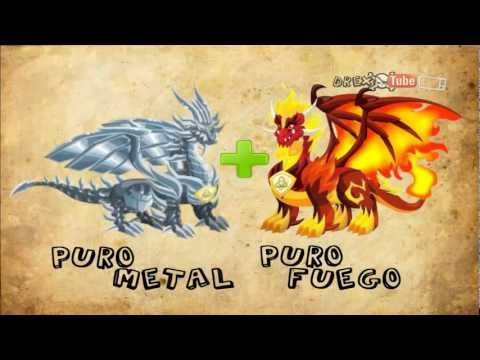 Dragon City Como Tener Dragones Legendarios Puros y Unicos 2013 HD