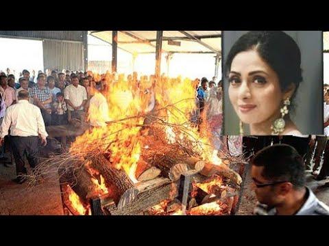 Xxx Mp4 Sridevi Funeral In Mumbai Full Video RIP🙏🙏🙏 3gp Sex