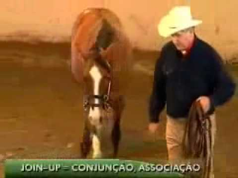 Monty Roberts Doma Racional Metodo Join Up