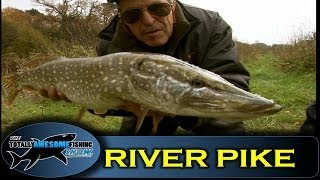 Pike fishing with oiled deadbaits - Totally Awesome Fishing Show