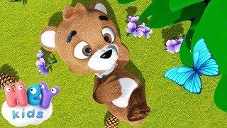 Teddy Petit Ours Brun - Chanson pour les petit | HeyKids