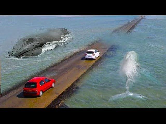 Die meisten gefährlichen Straßen in der Welt