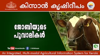 A Tale of an Innovative Dairy Farmer - Jobi Santhosh, Pathanamthitta